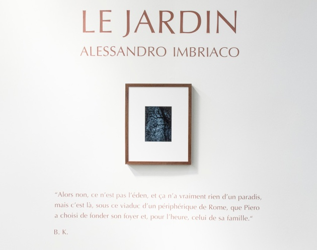 Le Jardin - information about the exhibition